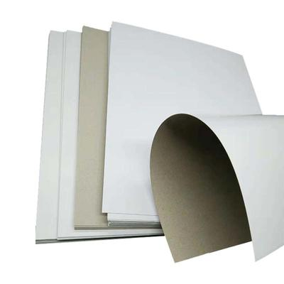 Duplex Paper Board / Duplex Board Paper With Grey Back
