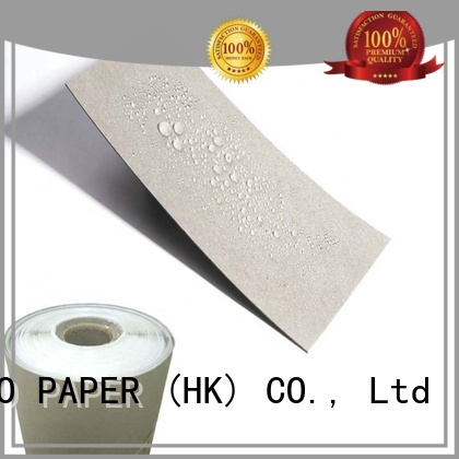 customization pe coated paperboard double for frozen food NEW BAMBOO PAPER